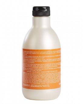Sashapure Repairing Shampoo